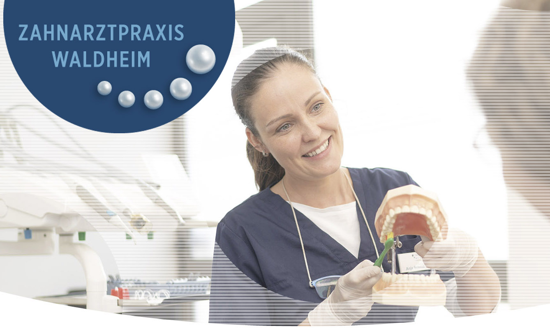 Die freundliche Prophylaxeassistentin erklärt, wie man richtig Zähne putzt